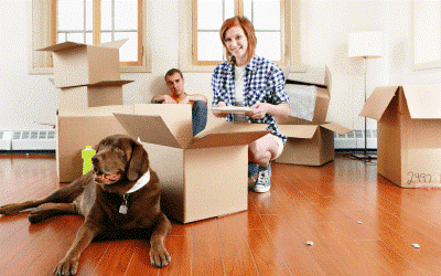 Moving into a new house with your dog or cat